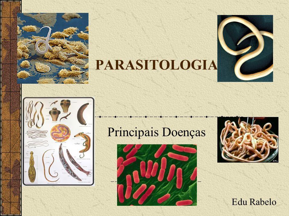 PARASITOLOGIA Principais Doenças Edu Rabelo