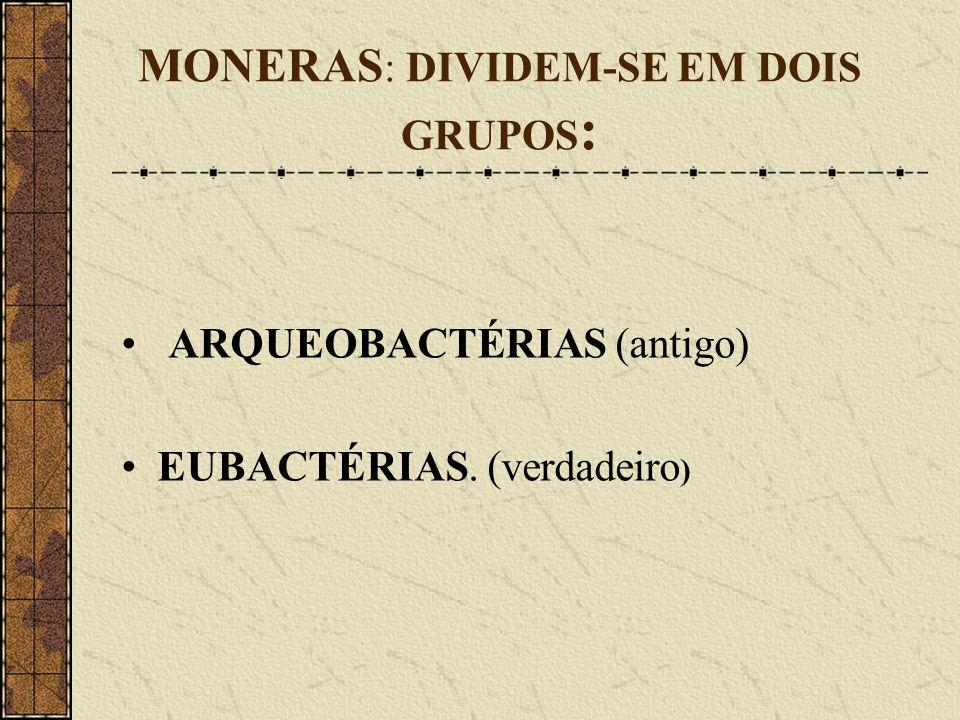 MONERAS : DIVIDEM-SE EM DOIS GRUPOS : ARQUEOBACTÉRIAS (antigo) EUBACTÉRIAS. (verdadeiro )