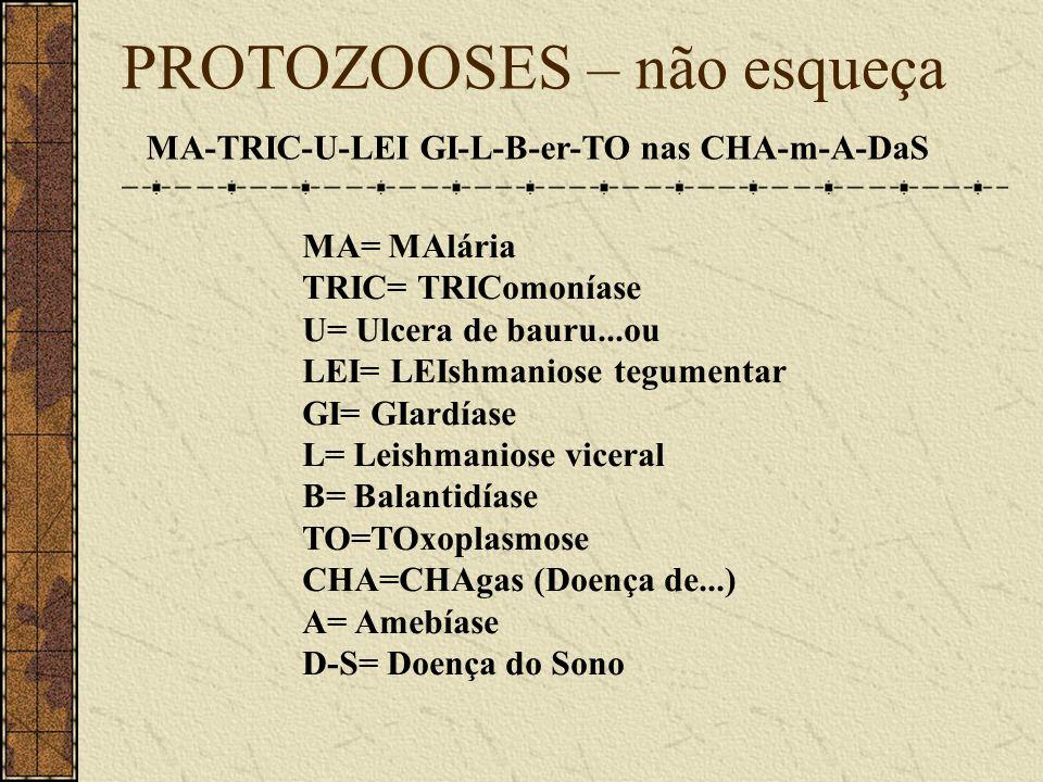 PROTOZOOSES – não esqueça MA-TRIC-U-LEI GI-L-B-er-TO nas CHA-m-A-DaS MA= MAlária TRIC= TRIComoníase U= Ulcera de bauru...ou LEI= LEIshmaniose tegument