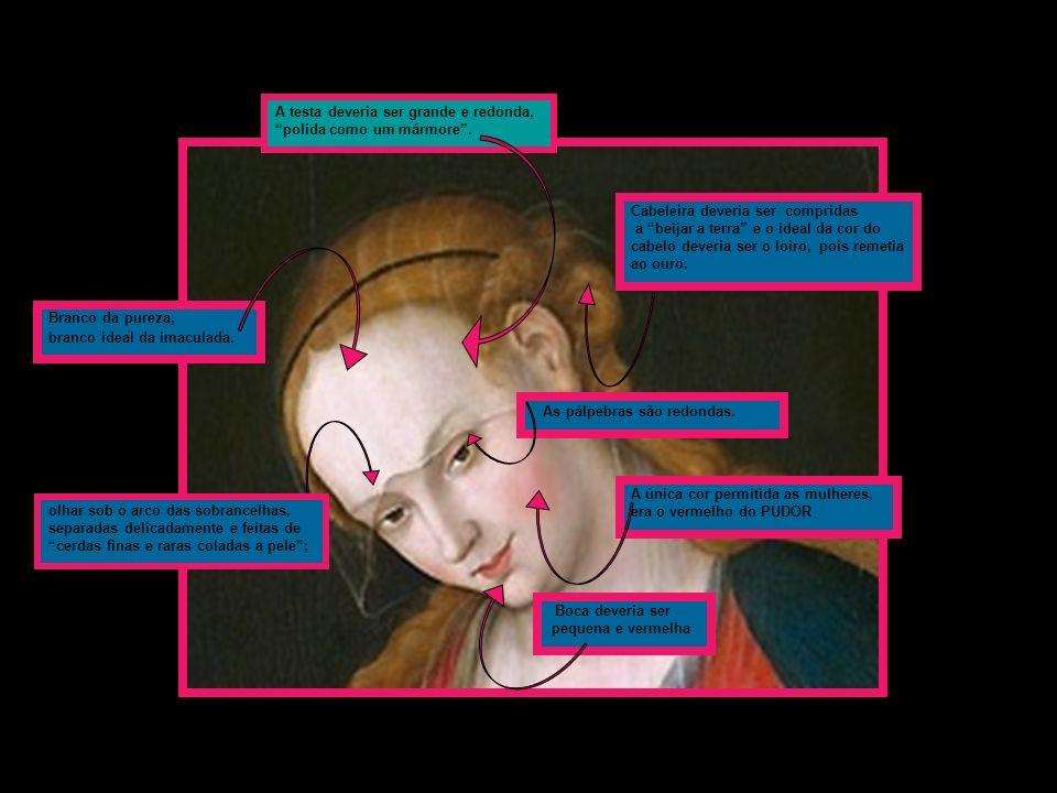 A testa deveria ser grande e redonda, polida como um mármore. olhar sob o arco das sobrancelhas, separadas delicadamente e feitas de cerdas finas e ra