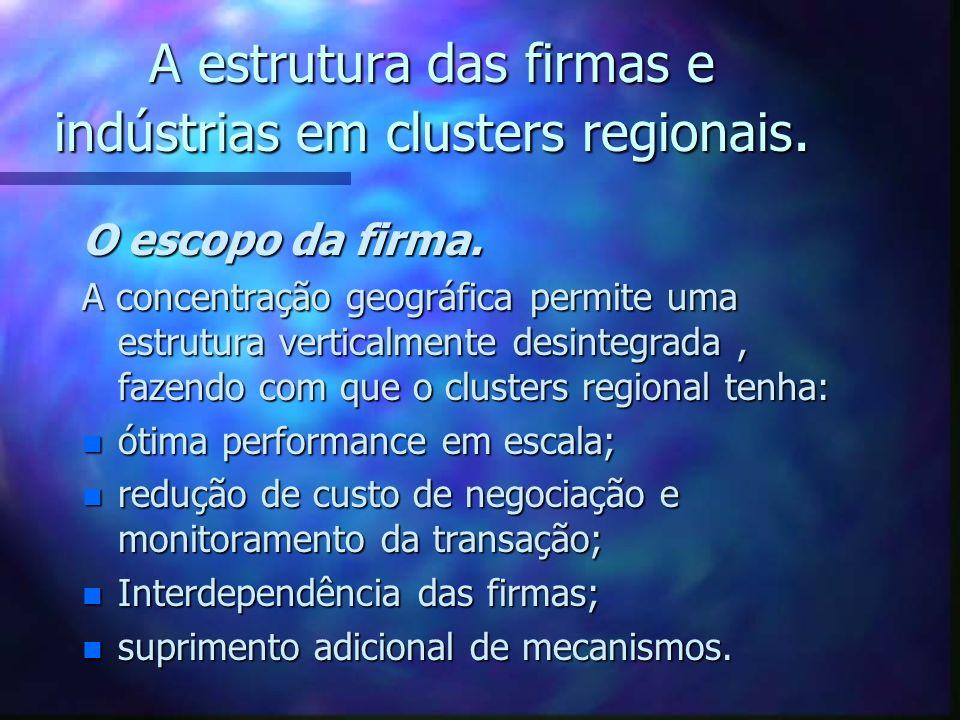 A estrutura das firmas e indústrias em clusters regionais. O escopo da firma. A concentração geográfica permite uma estrutura verticalmente desintegra