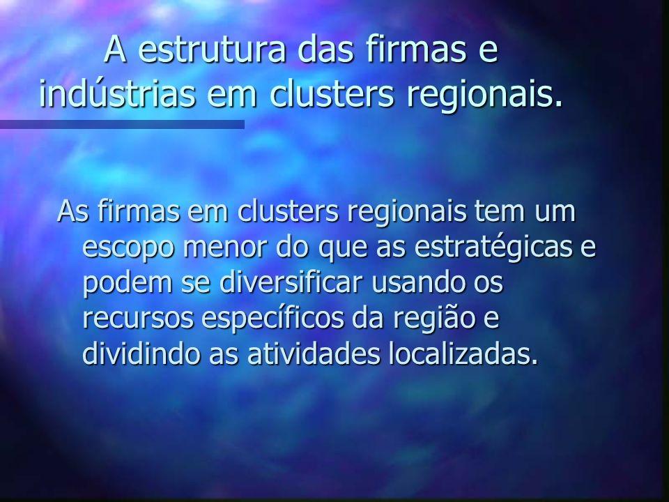 A estrutura das firmas e indústrias em clusters regionais. As firmas em clusters regionais tem um escopo menor do que as estratégicas e podem se diver