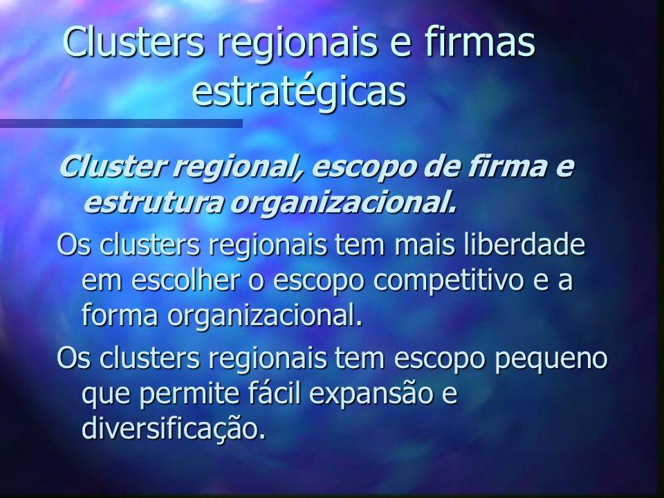 Clusters regionais e firmas estratégicas Cluster regional, escopo de firma e estrutura organizacional. Os clusters regionais tem mais liberdade em esc