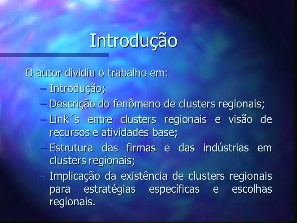 Clusters Regionais e Racionalidades Econômicas Cluster Regional: Recursos naturais, economia de escala em produção e fornecimento, desenvolvimento de mercados em laboratórios especializados, desenvolvimento local de fornecedores de equipamentos, infra-estrutura compartilhada e outras externalidades.