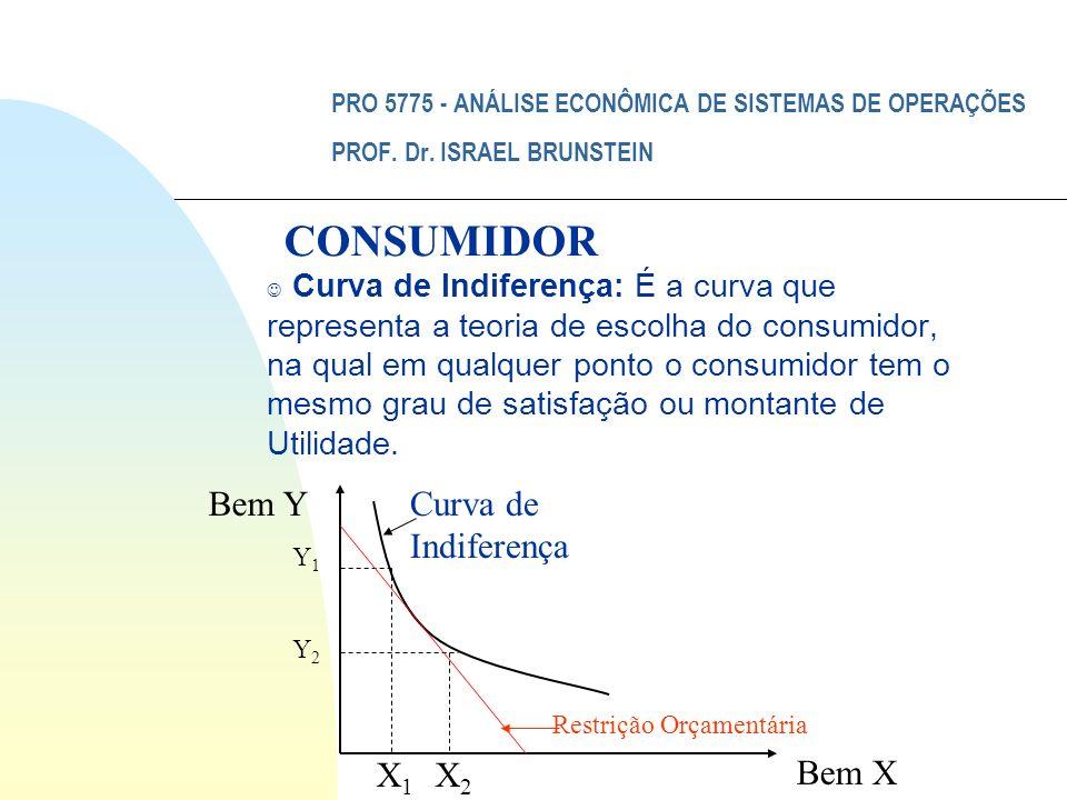 PRO 5775 - ANÁLISE ECONÔMICA DE SISTEMAS DE OPERAÇÕES PROF. Dr. ISRAEL BRUNSTEIN J Curva de Indiferença: É a curva que representa a teoria de escolha