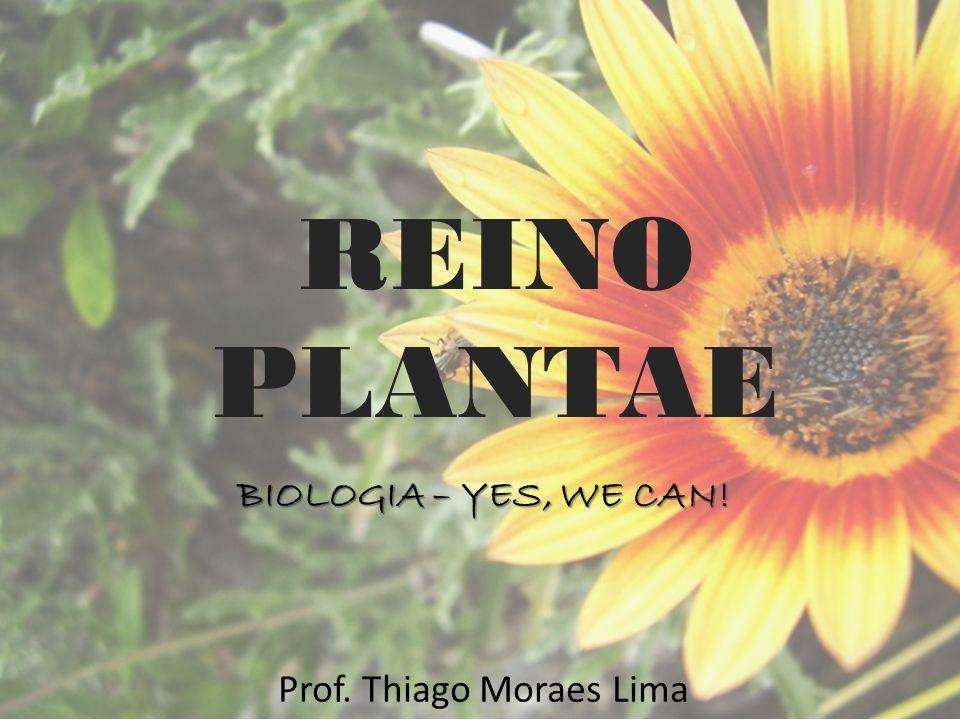 REINO PLANTAE BIOLOGIA – YES, WE CAN! Prof. Thiago Moraes Lima