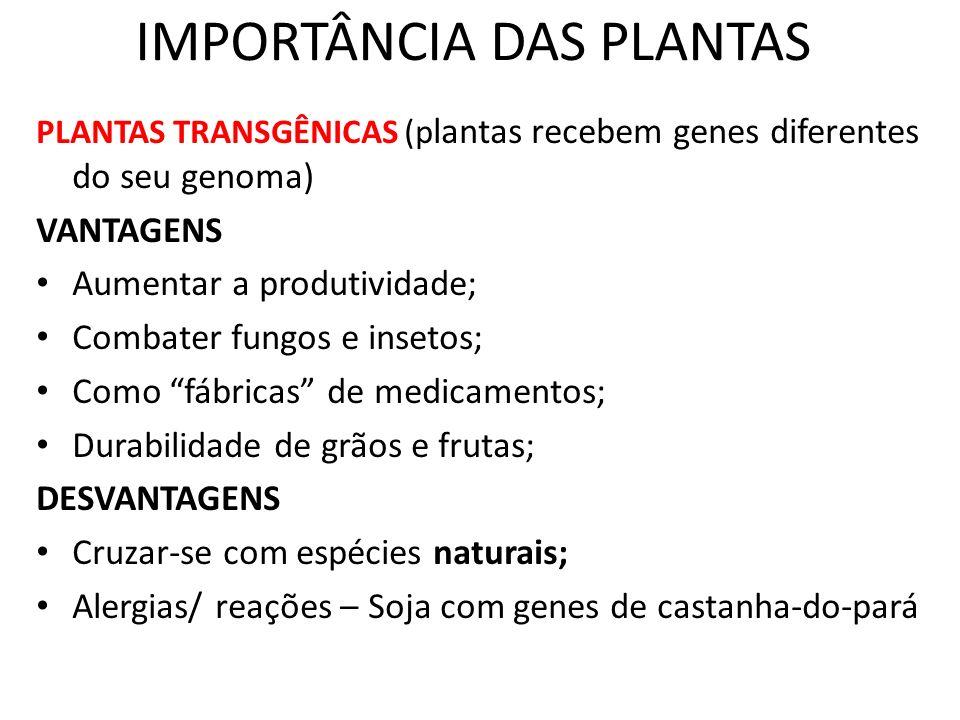 IMPORTÂNCIA DAS PLANTAS PLANTAS TRANSGÊNICAS (p lantas recebem genes diferentes do seu genoma) VANTAGENS Aumentar a produtividade; Combater fungos e i