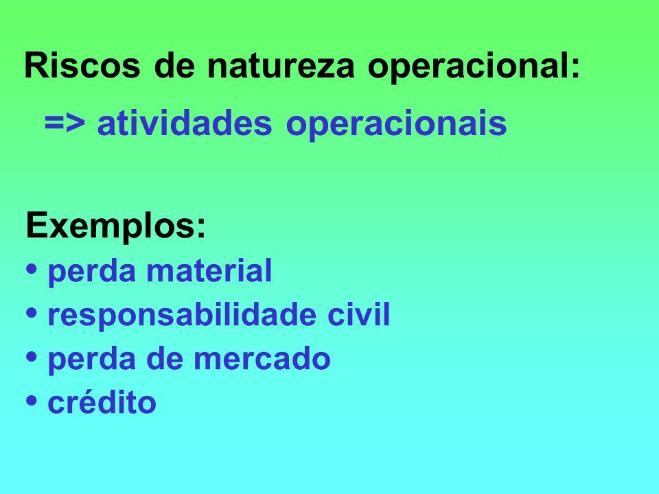 Riscos de natureza operacional: => atividades operacionais Exemplos: perda material responsabilidade civil perda de mercado crédito