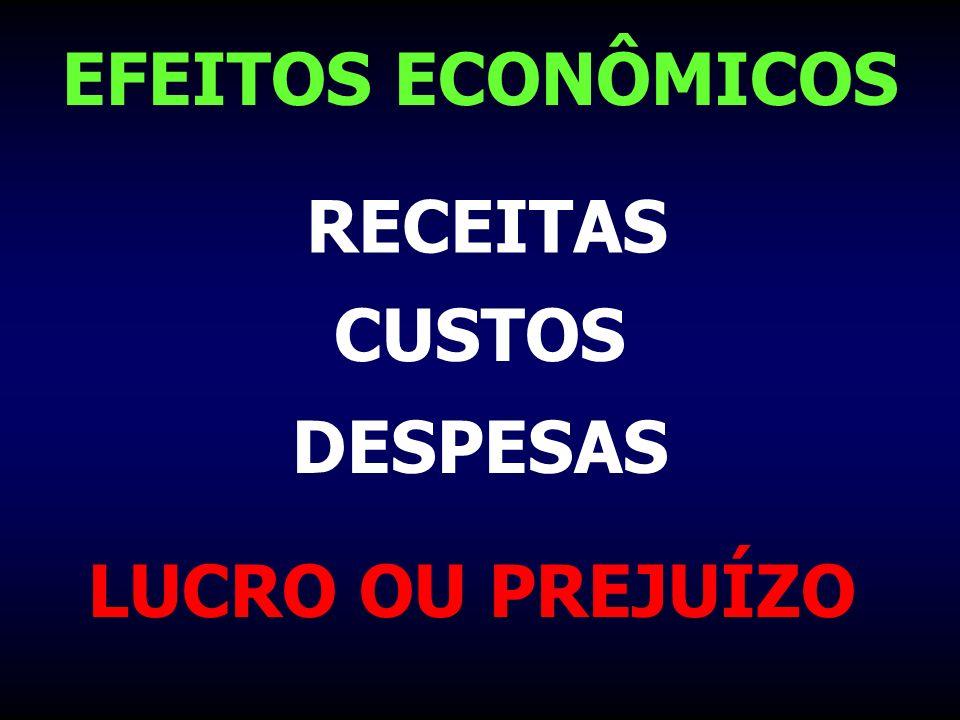 EFEITOS ECONÔMICOS RECEITAS CUSTOS DESPESAS LUCRO OU PREJUÍZO