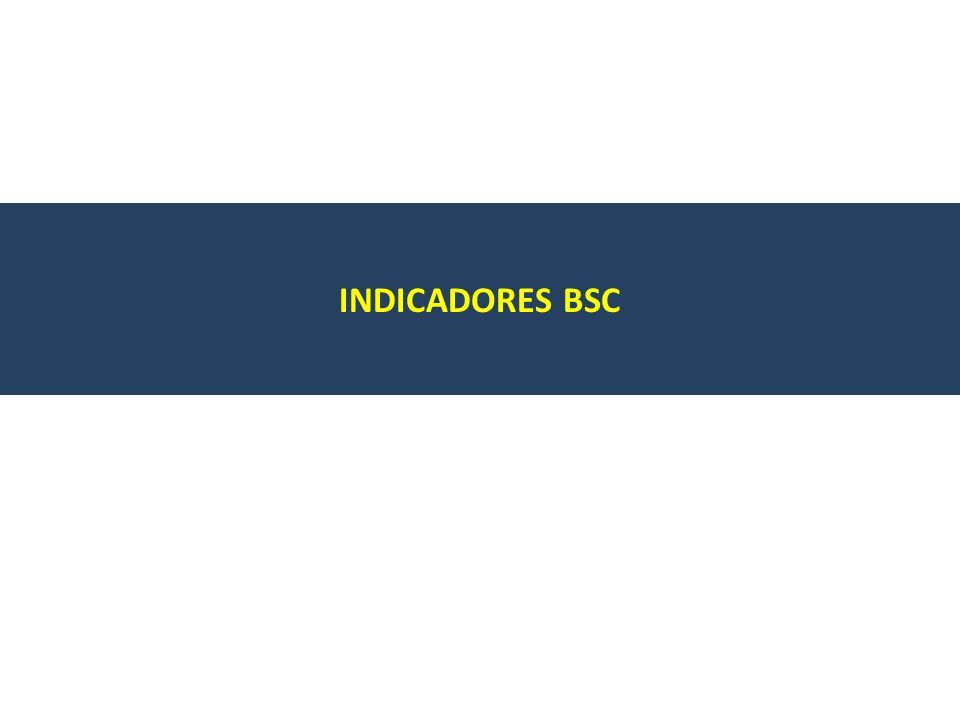 INDICADORES BSC
