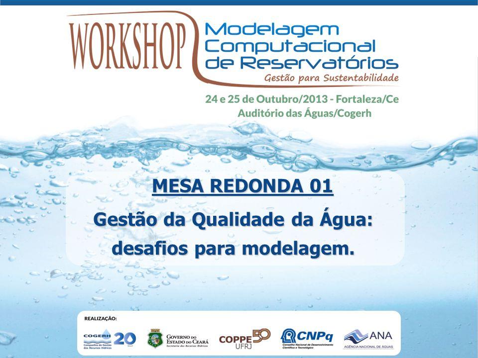 Gestão da Qualidade da Água: desafios para modelagem. MESA REDONDA 01