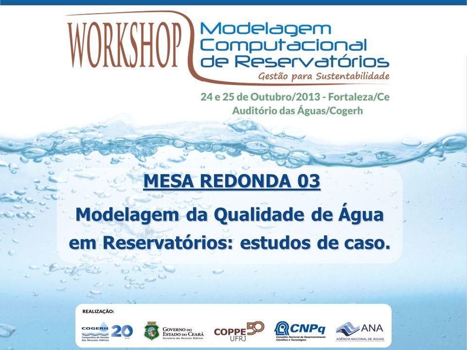 Modelagem da Qualidade de Água em Reservatórios: estudos de caso. MESA REDONDA 03