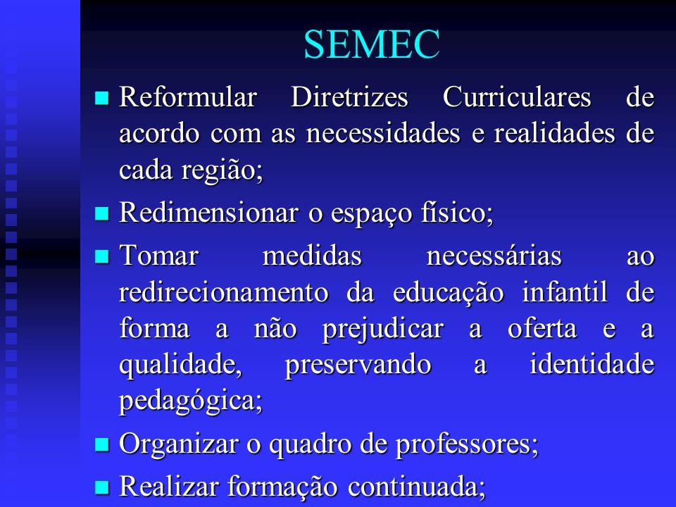 SEMEC Reformular Diretrizes Curriculares de acordo com as necessidades e realidades de cada região; Reformular Diretrizes Curriculares de acordo com a