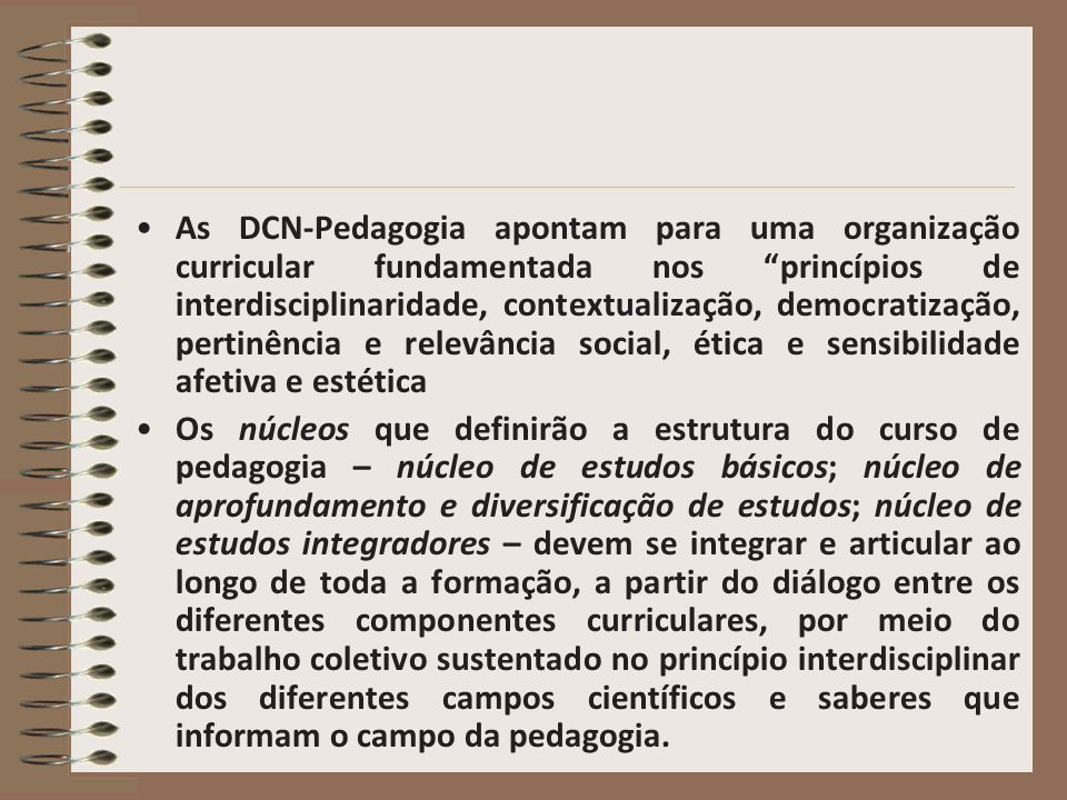 As DCN-Pedagogia apontam para uma organização curricular fundamentada nos princípios de interdisciplinaridade, contextualização, democratização, perti