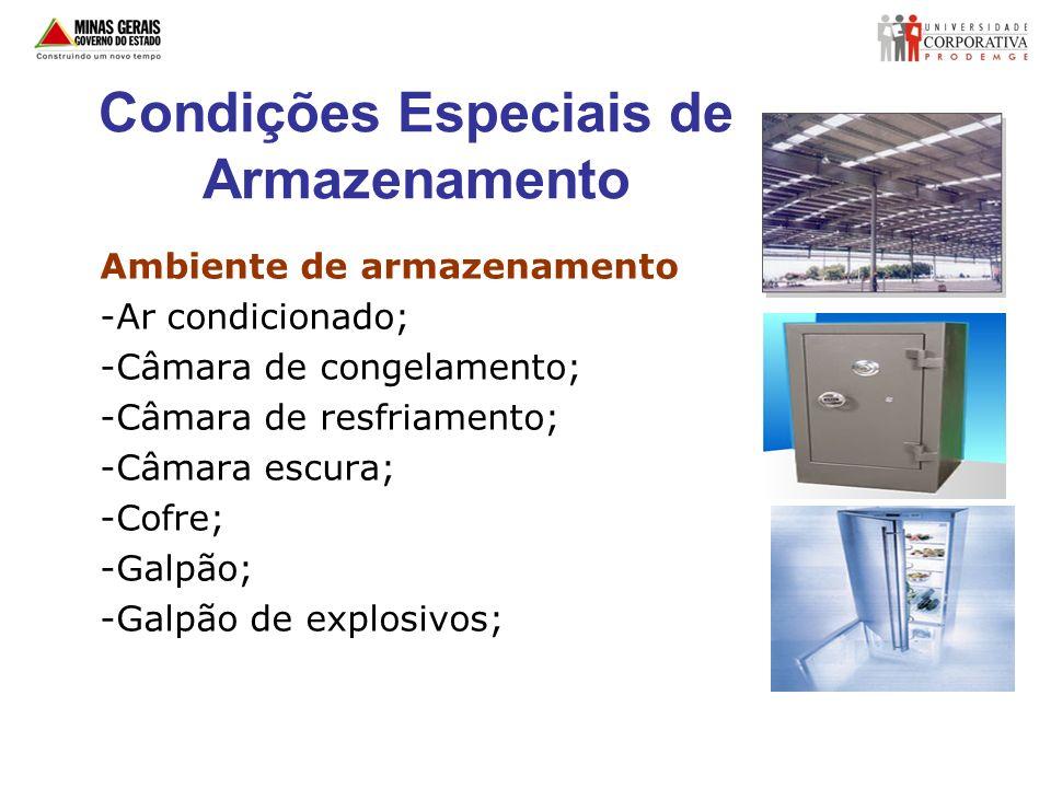 Condições Especiais de Armazenamento Ambiente de armazenamento -Ar condicionado; -Câmara de congelamento; -Câmara de resfriamento; -Câmara escura; -Co