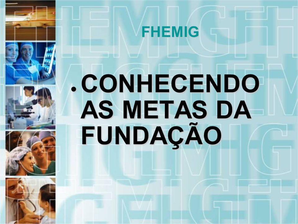 CONHECENDO AS METAS DA FUNDAÇÃO CONHECENDO AS METAS DA FUNDAÇÃO FHEMIG