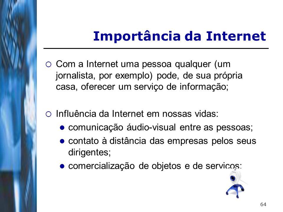 64 Importância da Internet Com a Internet uma pessoa qualquer (um jornalista, por exemplo) pode, de sua própria casa, oferecer um serviço de informaçã