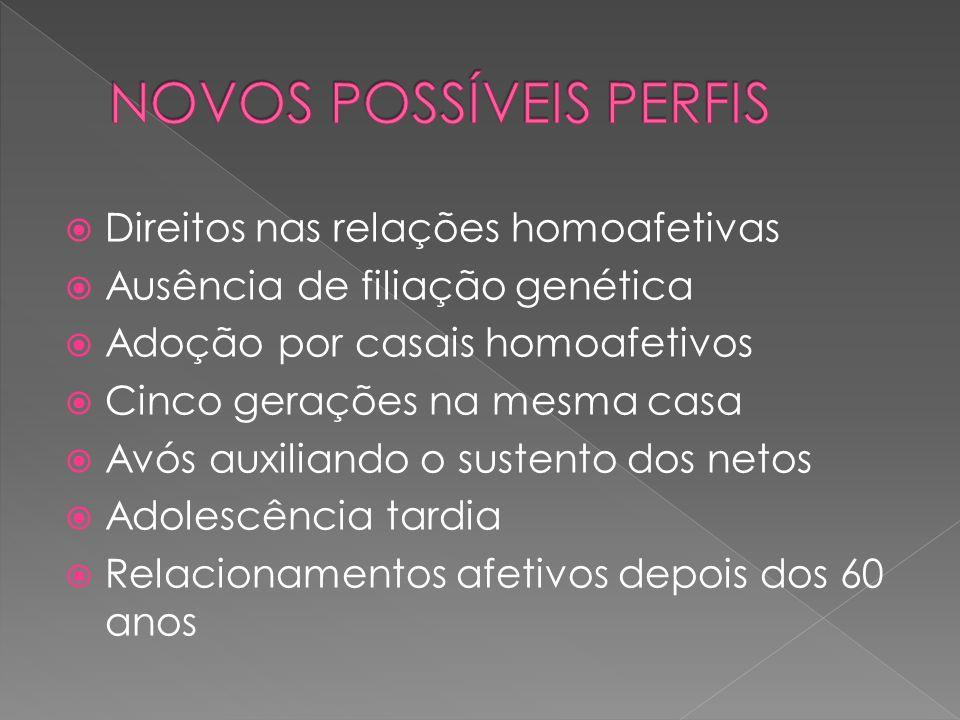Direitos nas relações homoafetivas Ausência de filiação genética Adoção por casais homoafetivos Cinco gerações na mesma casa Avós auxiliando o sustent