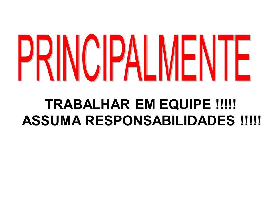 TRABALHAR EM EQUIPE !!!!! ASSUMA RESPONSABILIDADES !!!!!