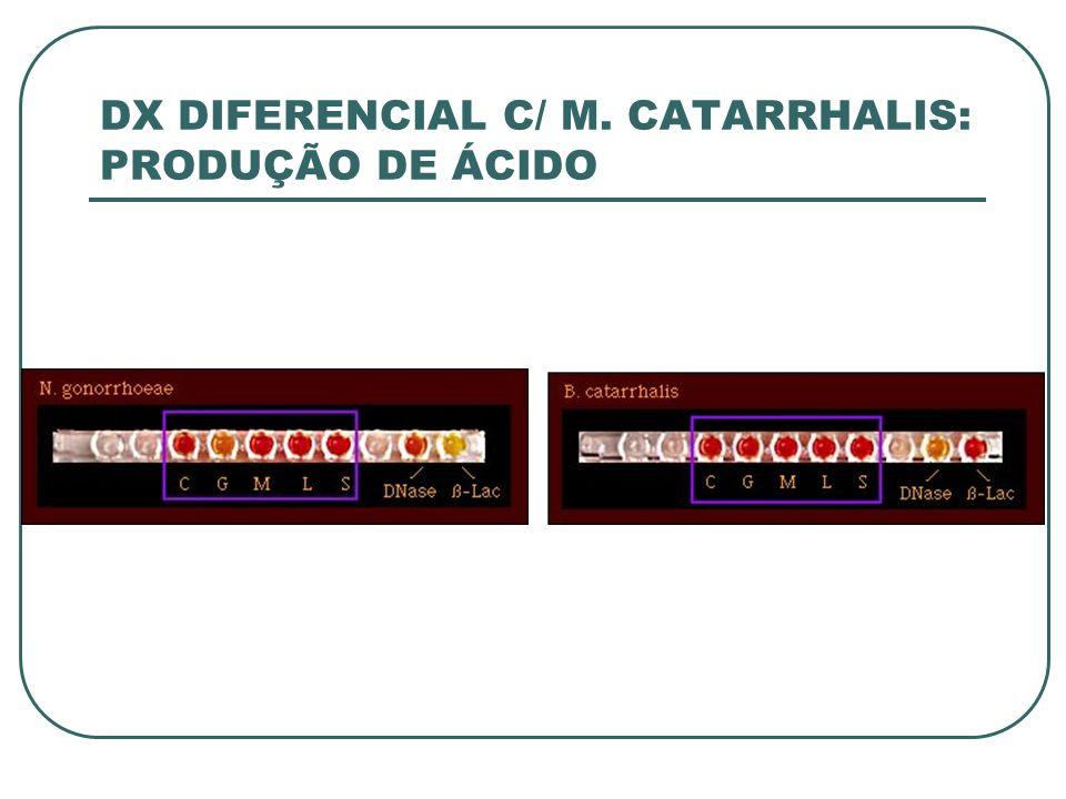 DX DIFERENCIAL C/ M. CATARRHALIS: PRODUÇÃO DE ÁCIDO