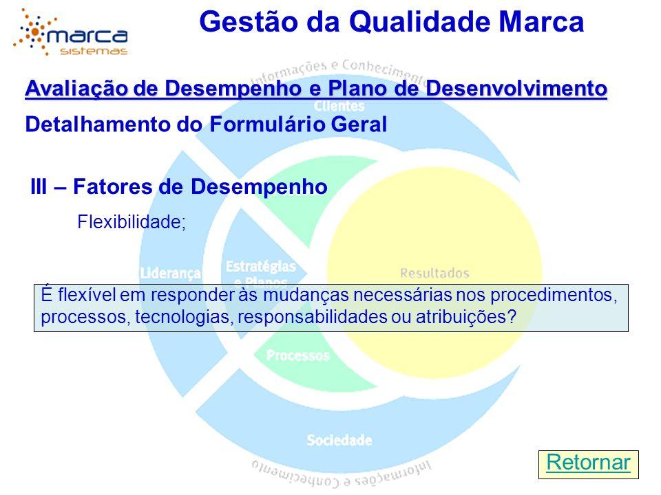 Gestão da Qualidade Marca Avaliação de Desempenho e Plano de Desenvolvimento Detalhamento do Formulário Geral III – Fatores de Desempenho Flexibilidad