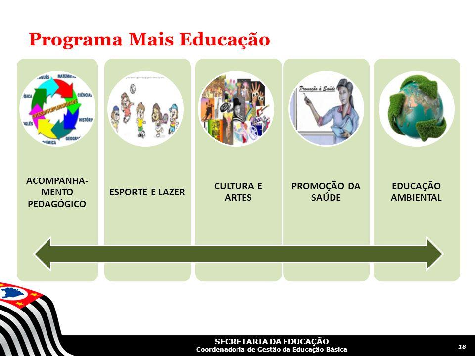SECRETARIA DA EDUCAÇÃO Coordenadoria de Gestão da Educação Básica Programa Mais Educação ACOMPANHA- MENTO PEDAGÓGICO ESPORTE E LAZER CULTURA E ARTES P