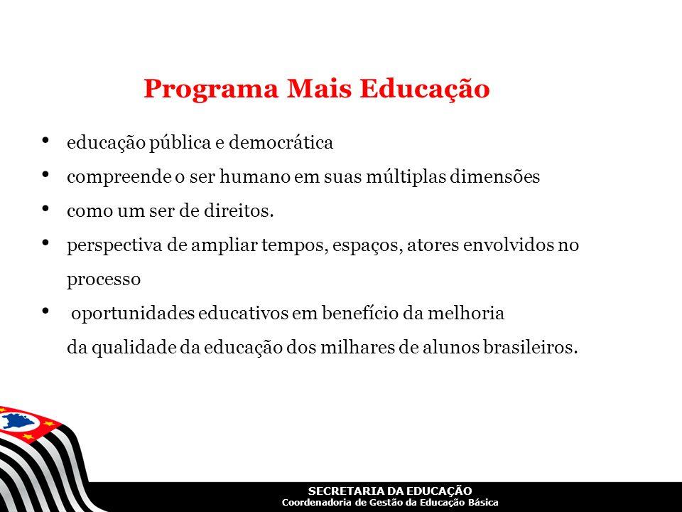 SECRETARIA DA EDUCAÇÃO Coordenadoria de Gestão da Educação Básica Programa Mais Educação educação pública e democrática compreende o ser humano em sua
