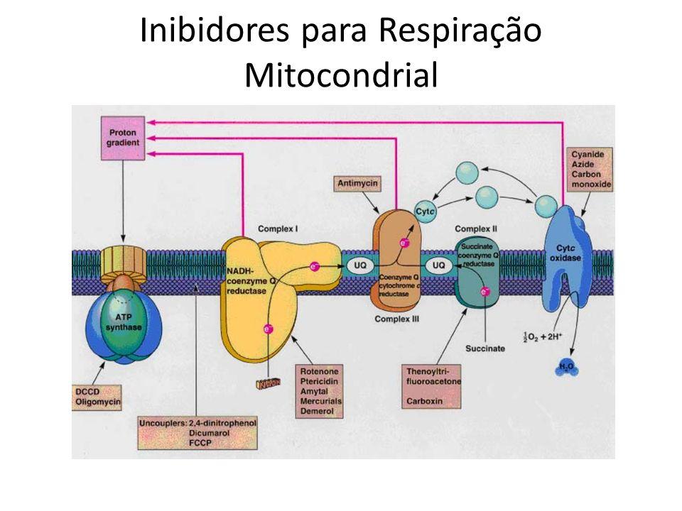 Inibidores para Respiração Mitocondrial