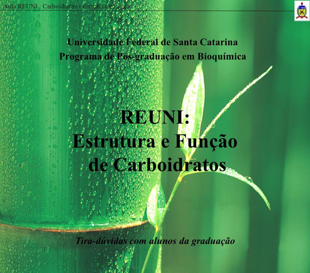 Aula REUNI : Carboidratos - Estrutura e Função REUNI: Estrutura e Função de Carboidratos Universidade Federal de Santa Catarina Programa de Pós-gradua
