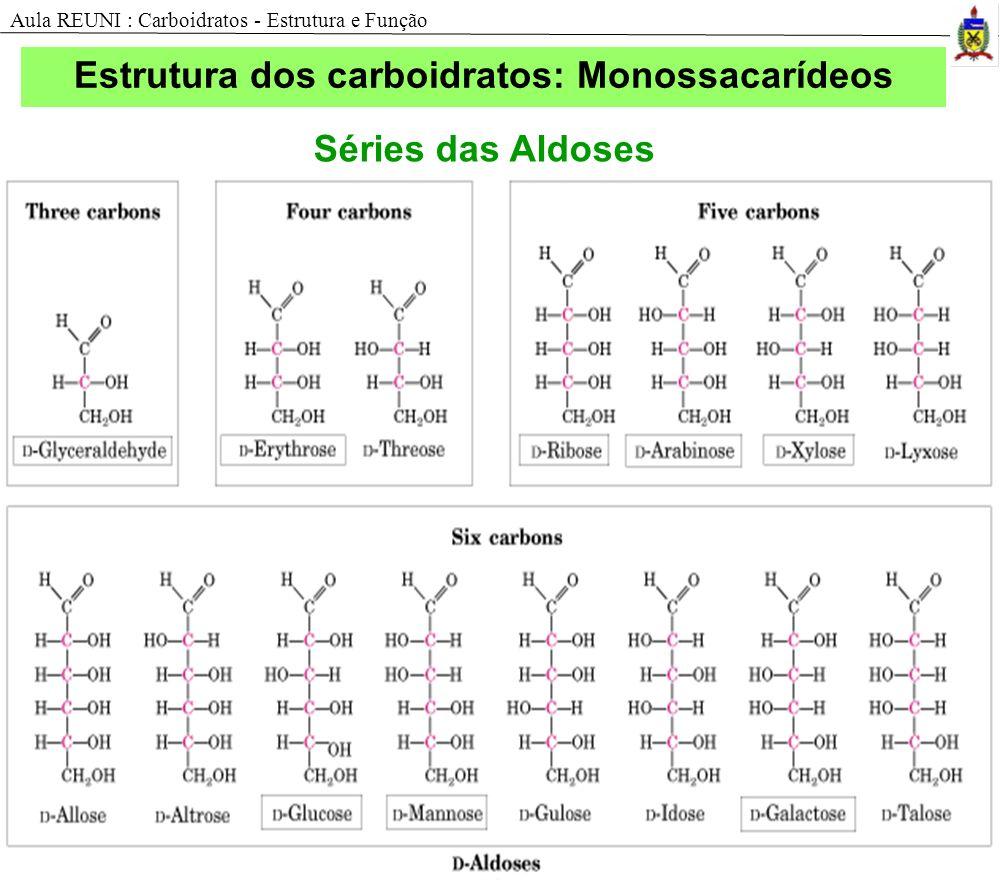 Estrutura dos carboidratos: Monossacarídeos Séries das Aldoses Aula REUNI : Carboidratos - Estrutura e Função