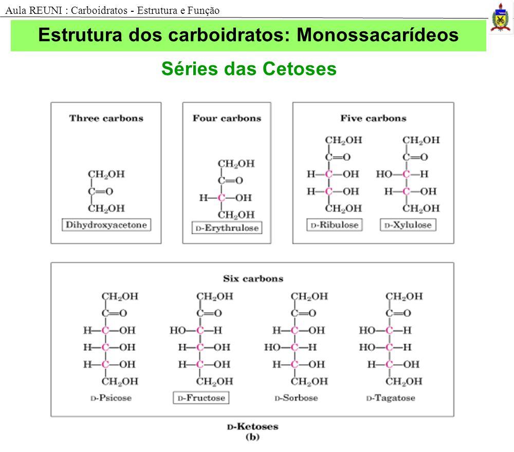 Estrutura dos carboidratos: Monossacarídeos Séries das Cetoses Aula REUNI : Carboidratos - Estrutura e Função