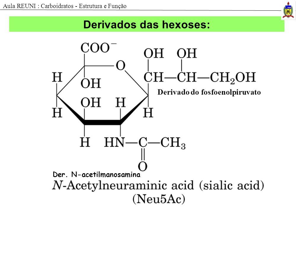 Derivado do fosfoenolpiruvato Der. N-acetilmanosamina Derivados das hexoses: Aula REUNI : Carboidratos - Estrutura e Função