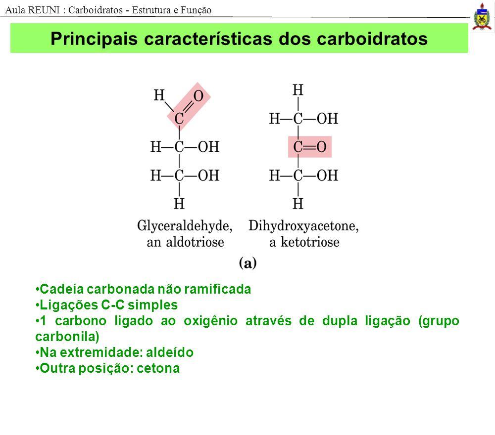 Estrutura dos carboidratos Cadeia carbonada não ramificada Ligações C-C simples 1 carbono ligado ao oxigênio através de dupla ligação (grupo carbonila) Na extremidade: aldeído Outra posição: cetona Aula REUNI : Carboidratos - Estrutura e Função