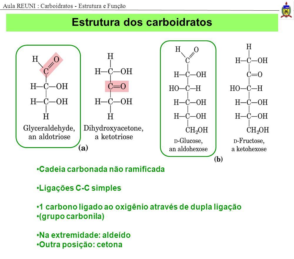 Estrutura dos carboidratos Cadeia carbonada não ramificada Ligações C-C simples 1 carbono ligado ao oxigênio através de dupla ligação (grupo carbonila