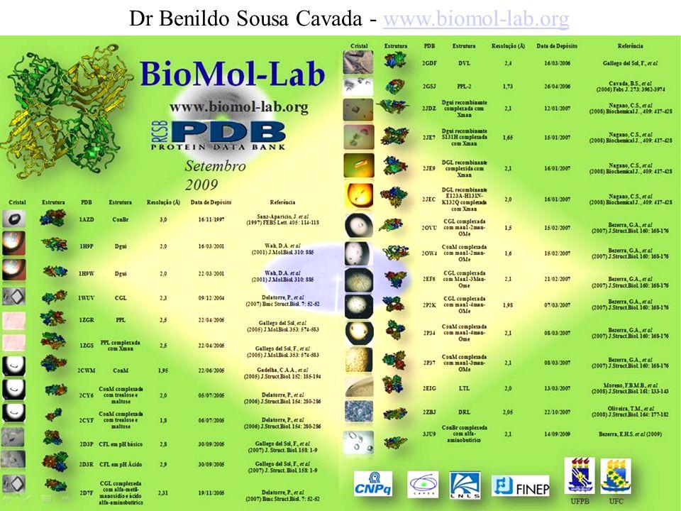 Dr Benildo Sousa Cavada - www.biomol-lab.orgwww.biomol-lab.org