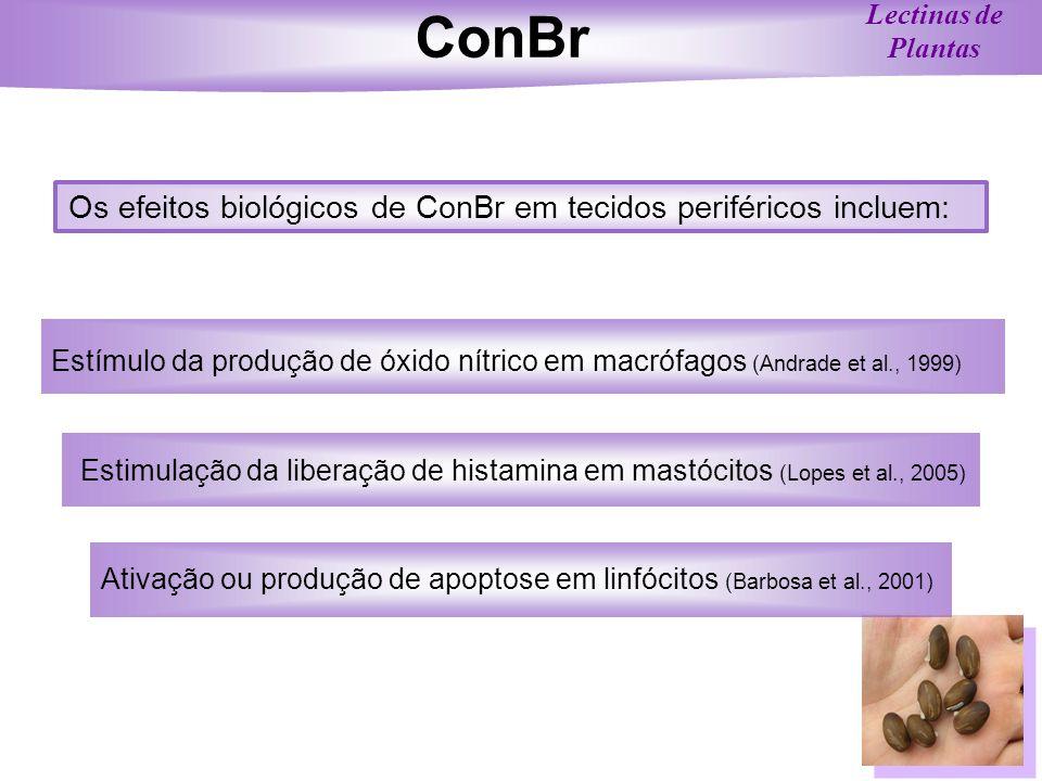 ConBr Os efeitos biológicos de ConBr em tecidos periféricos incluem: Estimulação da liberação de histamina em mastócitos (Lopes et al., 2005) Estímulo