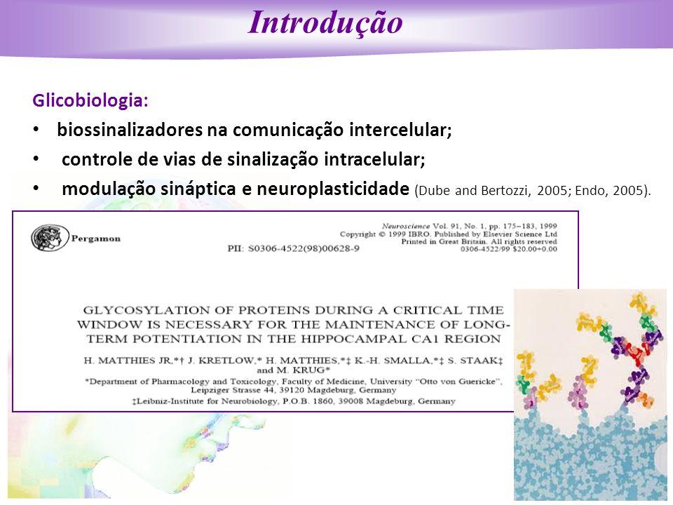 Introdução Glicobiologia: biossinalizadores na comunicação intercelular; controle de vias de sinalização intracelular; modulação sináptica e neuroplas