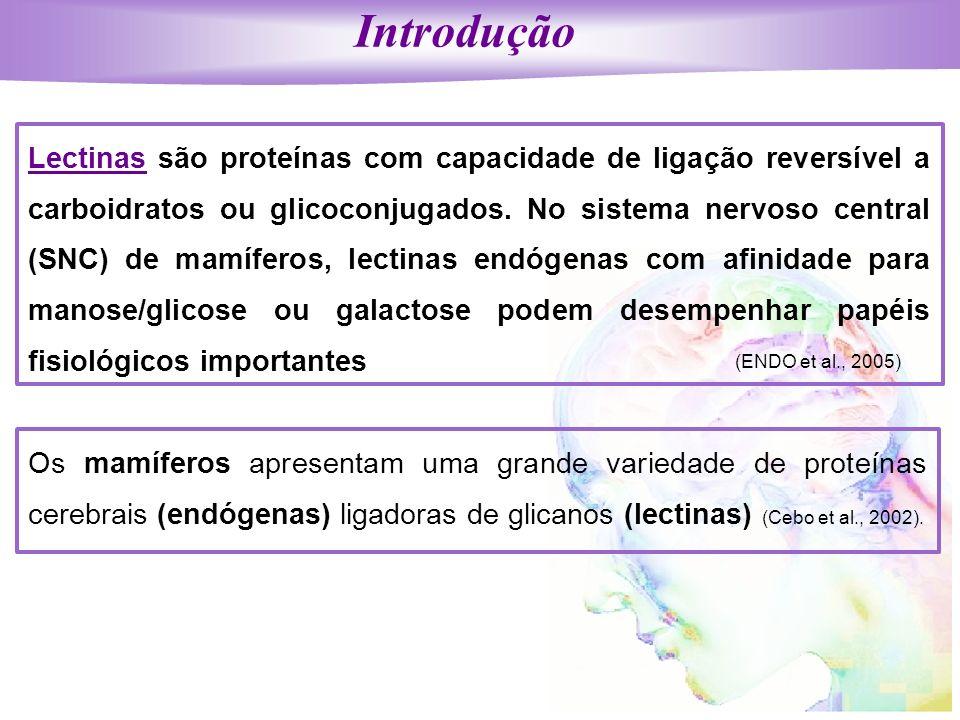 Introdução Lectinas são proteínas com capacidade de ligação reversível a carboidratos ou glicoconjugados. No sistema nervoso central (SNC) de mamífero