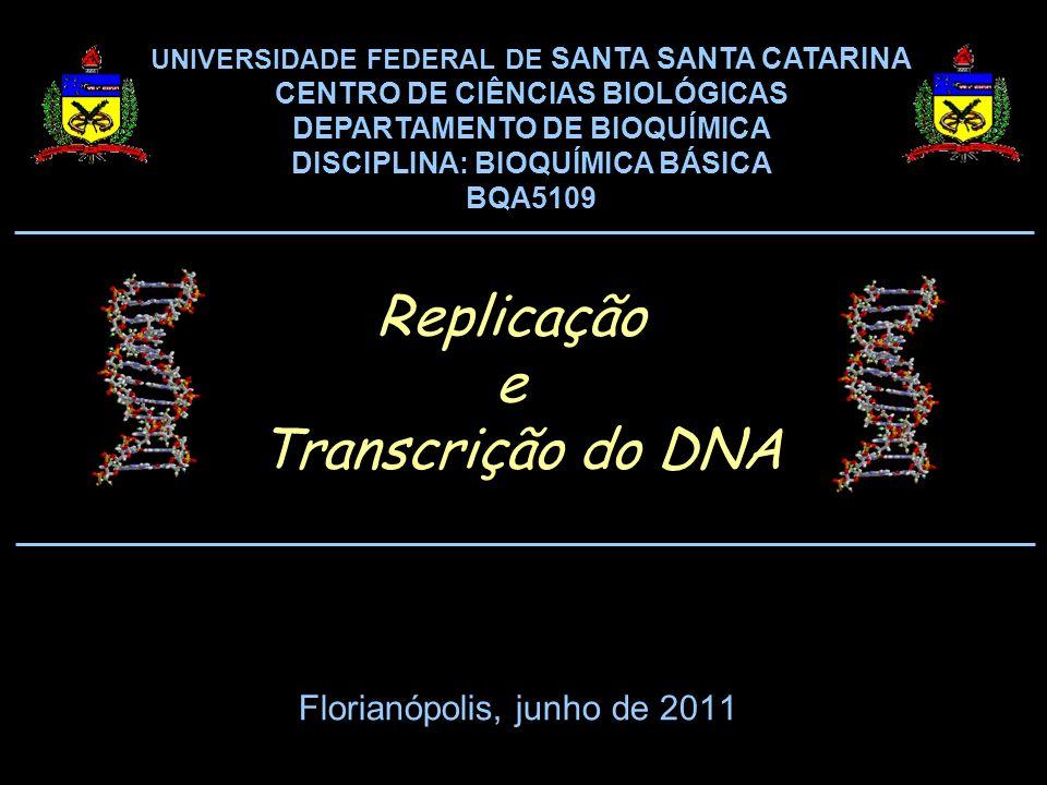 Florianópolis, junho de 2011 UNIVERSIDADE FEDERAL DE SANTA SANTA CATARINA CENTRO DE CIÊNCIAS BIOLÓGICAS DEPARTAMENTO DE BIOQUÍMICA DISCIPLINA: BIOQUÍMICA BÁSICA BQA5109 Replicação e Transcrição do DNA