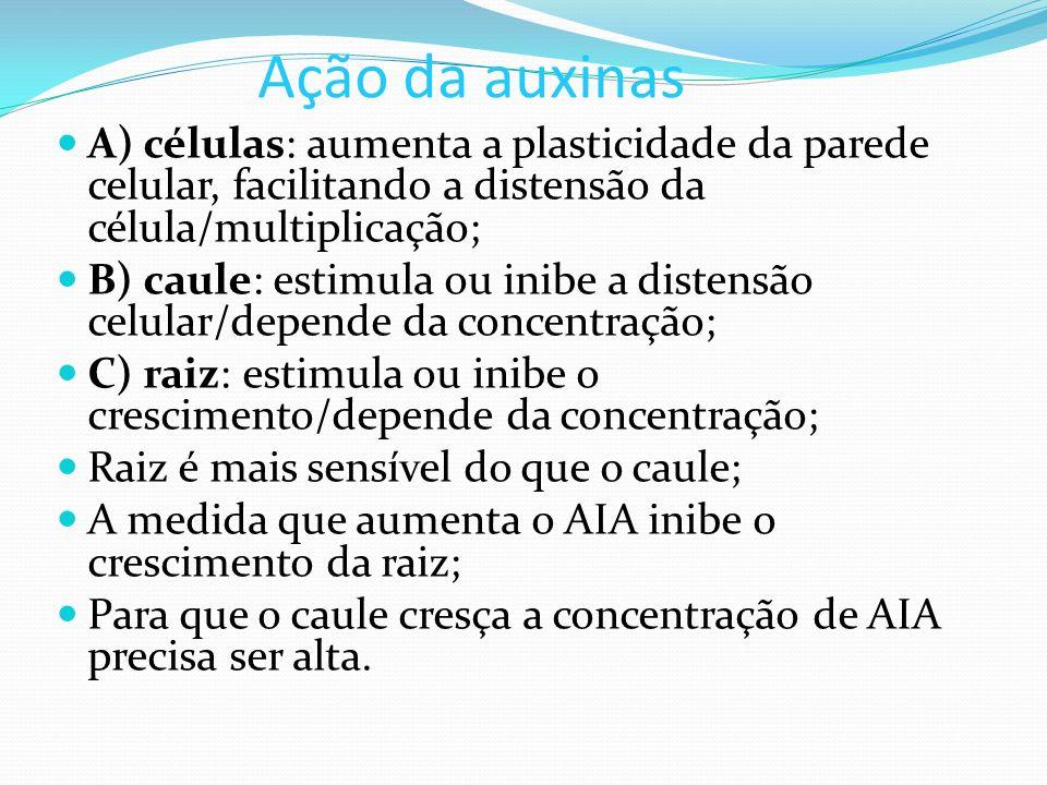 Ação da auxinas A) células: aumenta a plasticidade da parede celular, facilitando a distensão da célula/multiplicação; B) caule: estimula ou inibe a d