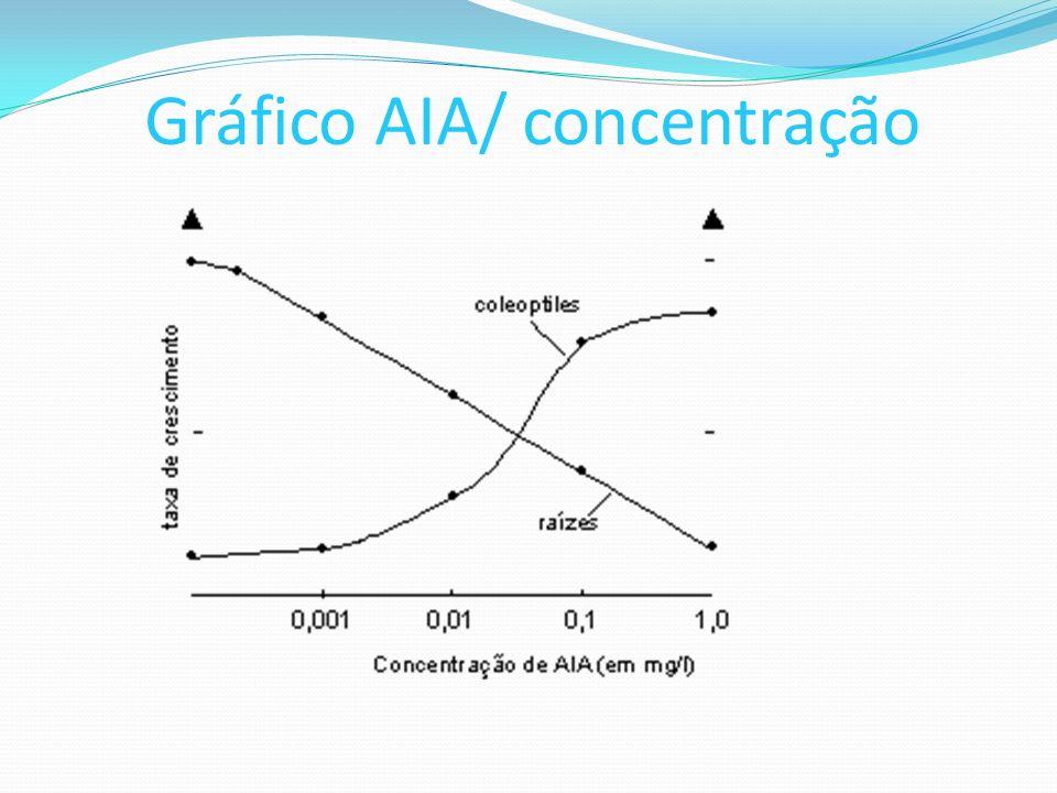 Gráfico AIA/ concentração