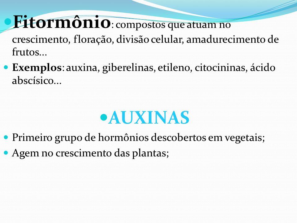 Fitormônio : compostos que atuam no crescimento, floração, divisão celular, amadurecimento de frutos... Exemplos: auxina, giberelinas, etileno, citoci