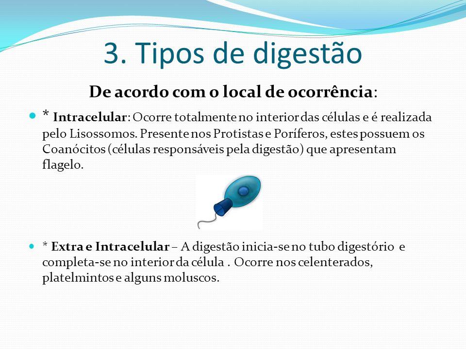 3. Tipos de digestão De acordo com o local de ocorrência: * Intracelular: Ocorre totalmente no interior das células e é realizada pelo Lisossomos. Pre
