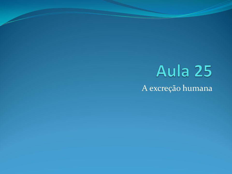 A excreção humana