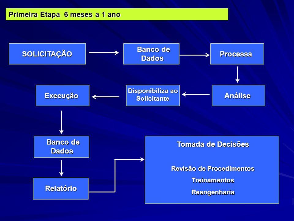 SOLICITAÇÃO Banco de Dados Banco de Dados Processa Primeira Etapa 6 meses a 1 ano Análise Disponibiliza ao Solicitante Execução Banco de Dados Banco d