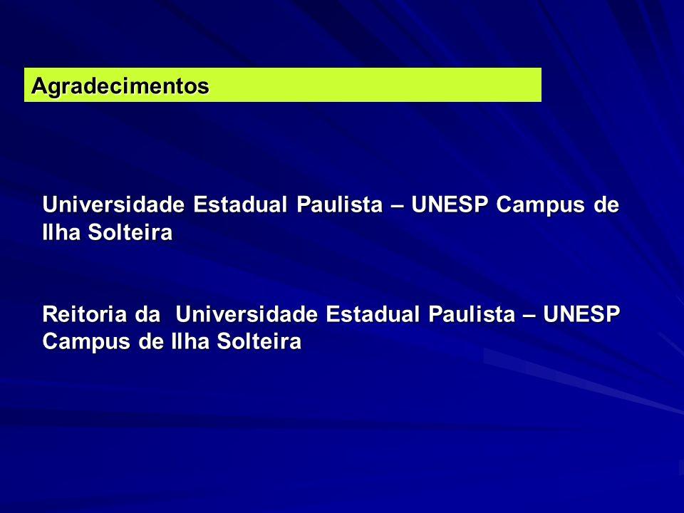 Agradecimentos Universidade Estadual Paulista – UNESP Campus de Ilha Solteira Reitoria da Universidade Estadual Paulista – UNESP Campus de Ilha Soltei