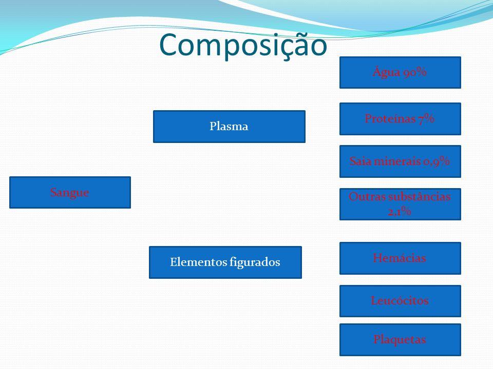 Monócitos Fagocitose; Apresentação de fragmentos de patógenos às células T; Podem deixar a corrente sanguínea para tornar-se macrófagos nos tecidos; Capazes de repor o conteúdo dos lisossomos ; Núcleo reniforme; Citoplasma abundante ;