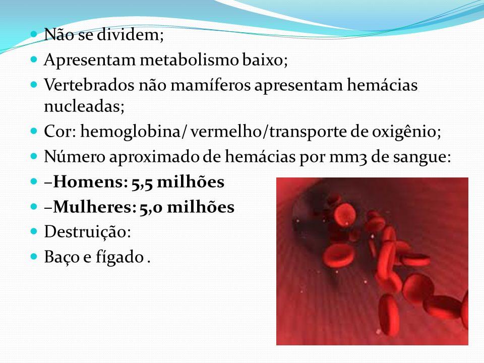 Funções do sangue 1. Transporte de substâncias; 2. Defesa do organismo; 3. Homeotermia.