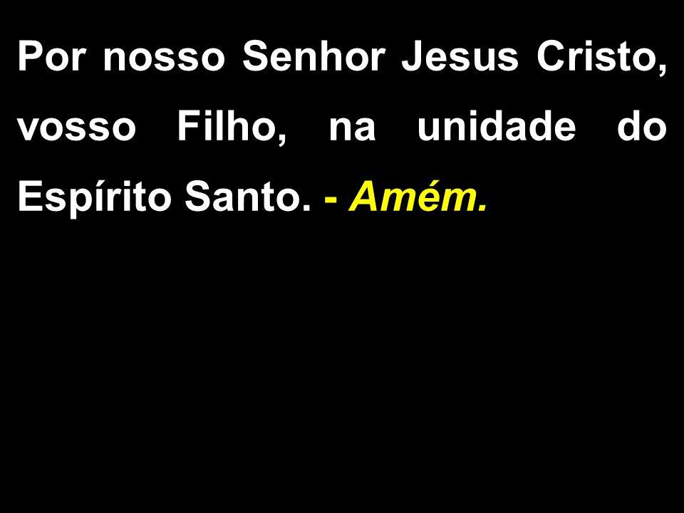 Por nosso Senhor Jesus Cristo, vosso Filho, na unidade do Espírito Santo. - Amém.
