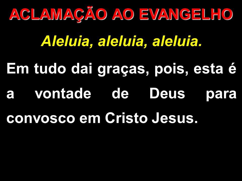 Aleluia, aleluia, aleluia. Em tudo dai graças, pois, esta é a vontade de Deus para convosco em Cristo Jesus. ACLAMAÇÃO AO EVANGELHO